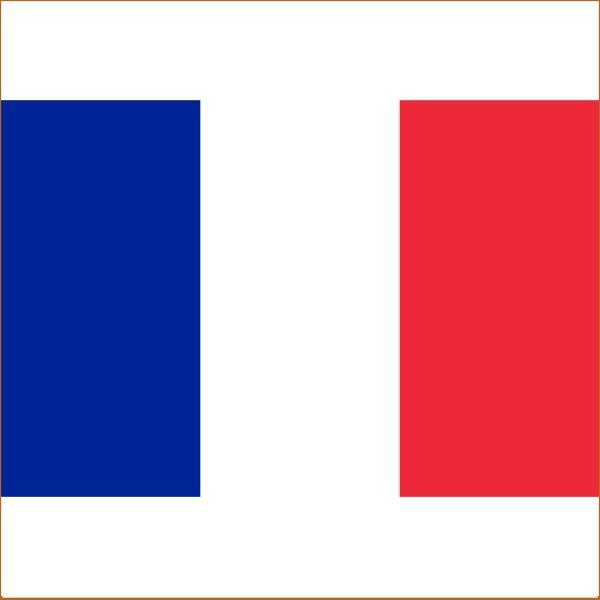 Перевод справки на французский