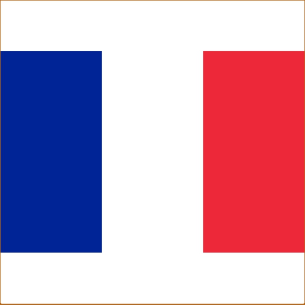 Поздравления перевод на французский