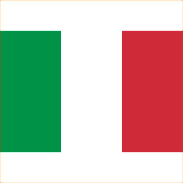 Перевод справки на итальянский
