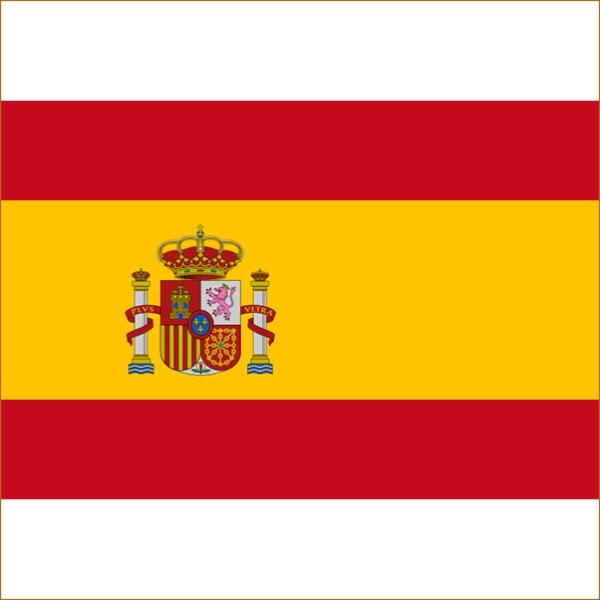 Перевод справки на испанский